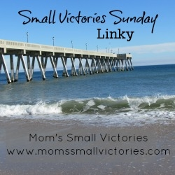 Small Victories Sunday Linky