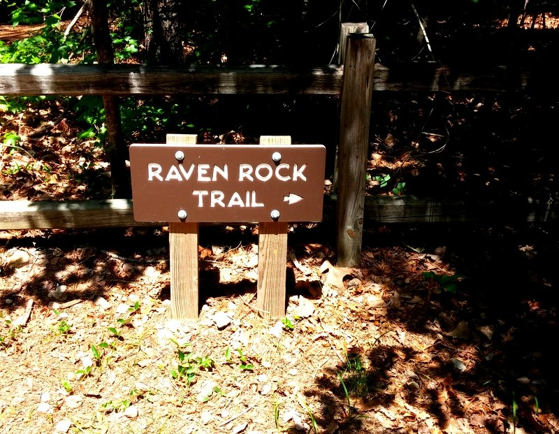 {See NC} Raven Rock State Park Adventures